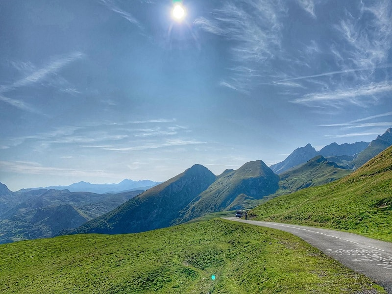 amazing Pyrenees