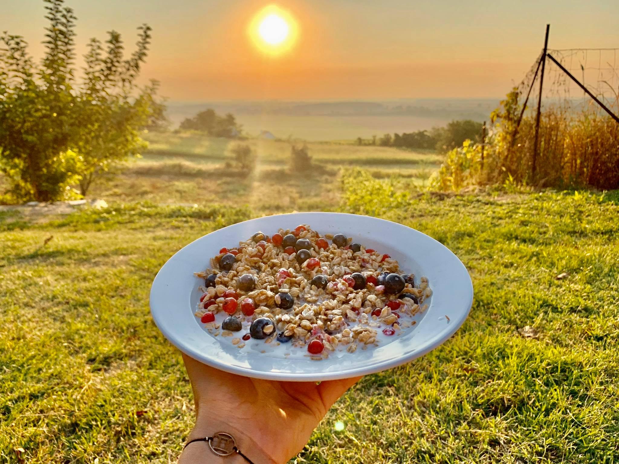 Cereale integrale, fructe de padure si lapte